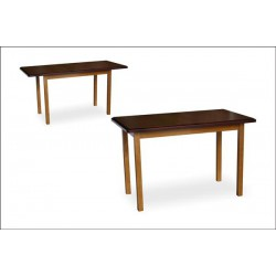 Стол столовый ТИС-2 (под заказ)