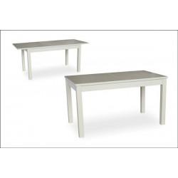Стол столовый ТИС-11 (под заказ)